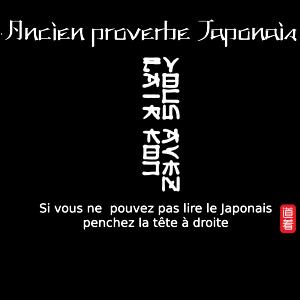 Proverbe japonais - Vous avez l'air…